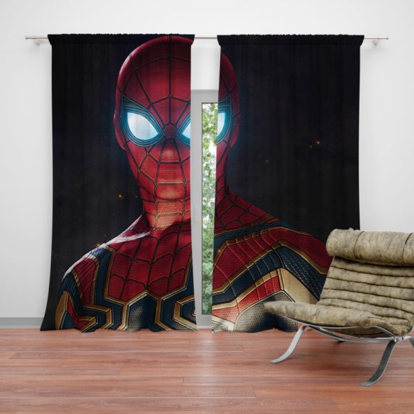 Spider-Man in Marvel Avengers Infinity War Movie Curtain